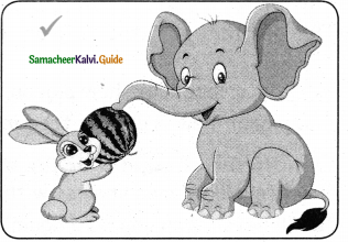 Samacheer Kalvi 5th English Guide Term 2 Supplementary Chapter 1 The Two Pigeons 3