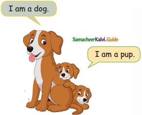 Samacheer Kalvi 5th English Guide Term 3 Prose Chapter 3 The Monster Tree 1
