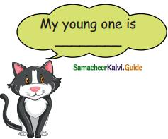 Samacheer Kalvi 5th English Guide Term 3 Prose Chapter 3 The Monster Tree 19