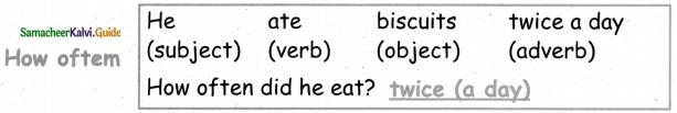 Samacheer Kalvi 5th English Guide Term 3 poem 1 Why Questions 10