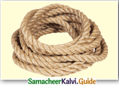 Samacheer Kalvi 7th English Guide Term 3 Prose Chapter 1 Journey by Train 8