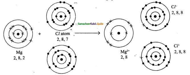 Samacheer Kalvi 9th Science Guide Chapter 13 Chemical Bonding 10