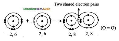 Samacheer Kalvi 9th Science Guide Chapter 13 Chemical Bonding 19
