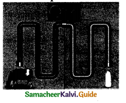 Samacheer Kalvi 9th Science Guide Chapter 21 Nutrition and Health 3