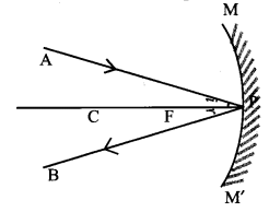 Samacheer Kalvi 9th Science Guide Chapter 6 Light 28
