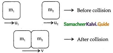 Samacheer Kalvi 11th Physics Guide Chapter 4 Work, Energy and Power 52