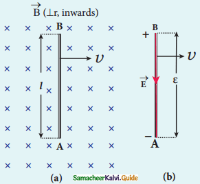 Samacheer Kalvi 12th Physics Guide Chapter 4 Electromagnetic Induction and Alternating Current 19