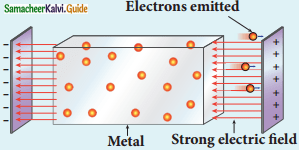 Samacheer Kalvi 12th Physics Guide Chapter 7 Dual Nature of Radiation and Matter 10