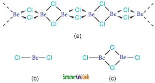 Samacheer Kalvi 11th Chemistry Guide Chapter 5 Alkali and Alkaline Earth Metals 2