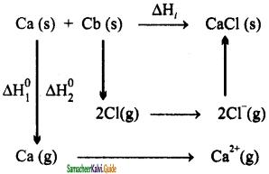 Samacheer Kalvi 11th Chemistry Guide Chapter 7 Thermodynamics 1