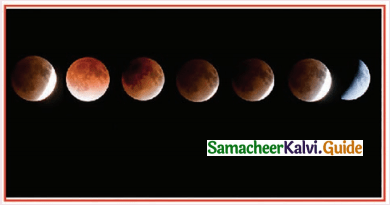 Samacheer Kalvi 11th Physics Guide Chapter 6 Gravitation 33