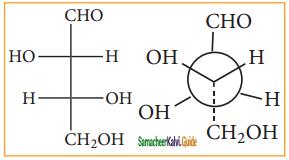 Samacheer Kalvi 11th Chemistry Guide Chapter 11 Fundamentals of Organic Chemistry 133