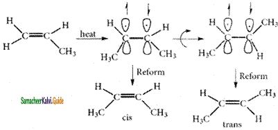 Samacheer Kalvi 11th Chemistry Guide Chapter 11 Fundamentals of Organic Chemistry 50