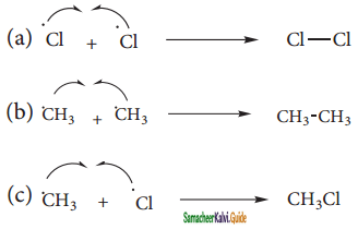 Samacheer Kalvi 11th Chemistry Guide Chapter 13 Hydrocarbons 143