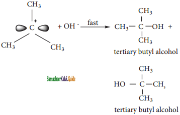 Samacheer Kalvi 11th Chemistry Guide Chapter 14 Haloalkanes and Haloarenes 127