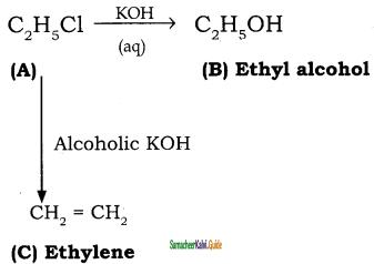 Samacheer Kalvi 11th Chemistry Guide Chapter 14 Haloalkanes and Haloarenes 62