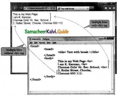 Samacheer Kalvi 11th Computer Applications Guide Chapter 10 HTML – Structural Tags 11
