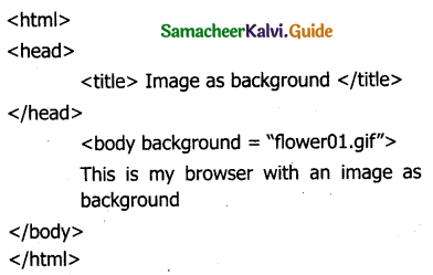 Samacheer Kalvi 11th Computer Applications Guide Chapter 10 HTML – Structural Tags 2