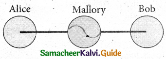 Samacheer Kalvi 11th Computer Applications Guide Chapter 17 Computer Ethics and Cyber Security 8