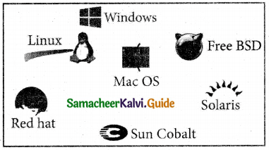 Samacheer Kalvi 11th Computer Applications Guide Chapter 4 Theoretical Concepts of Operating System 8