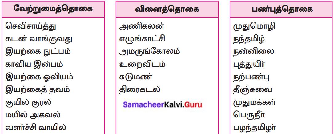 Samacheer Kalvi 8th Tamil Solutions Chapter 5.5 தொகைநிலை, தொகாநிலைத் தொடர்கள் 1