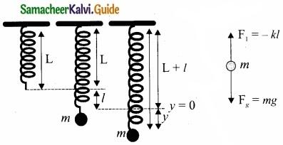 Tamil Nadu 11th Physics Model Question Paper 3 English Medium img 12