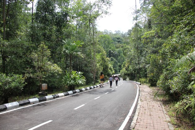 hill at parking area