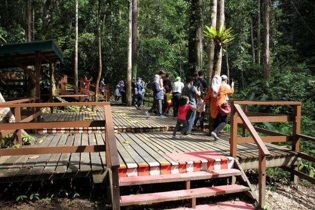 feeding platform for visitors