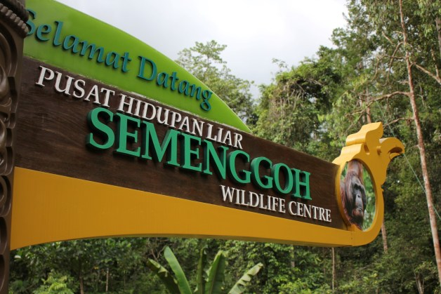 Semenggoh Wildlife Centre board