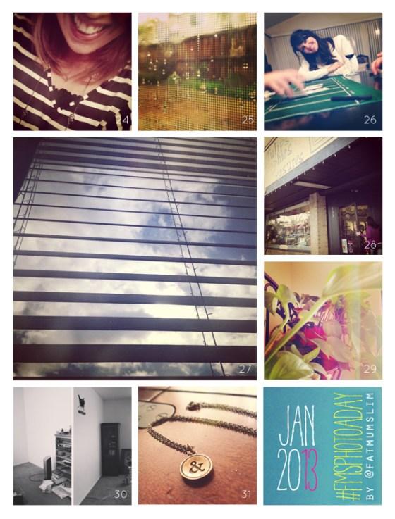 fmsphotoaday-january-2013-collage4