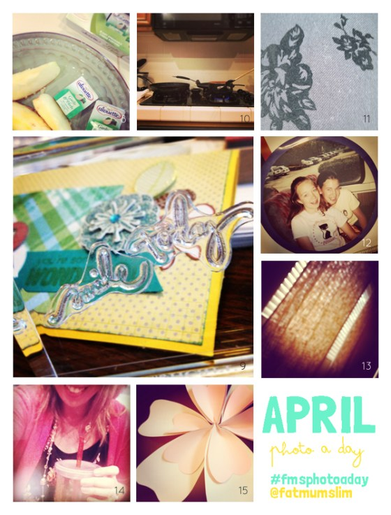 fmsphotoaday-april-2013-collage2
