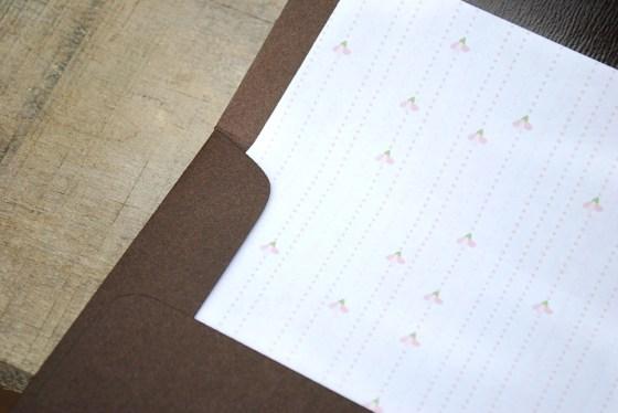 amies-cherry-blossom-bridal-shower-invitation-envelope-liner_0981