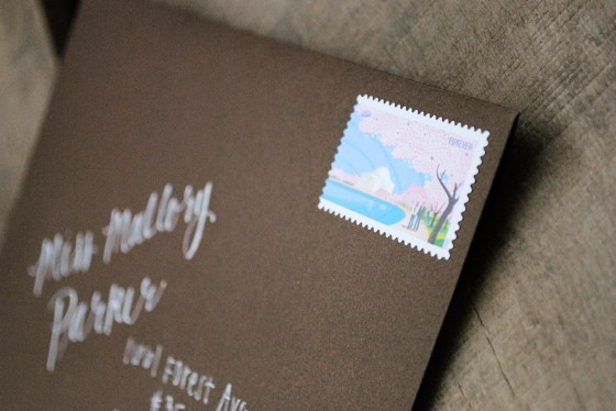 amies-cherry-blossom-stamps-bridal-shower-invitation_0989