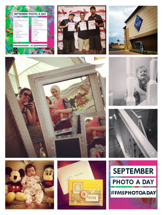 fmsphotoaday-sept-2013-collage1