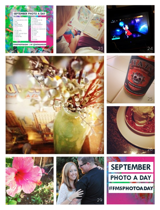 fmsphotoaday-sept-2013-collage4