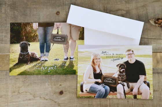 your new friend sam pregnancy announcement calligraphy photo card 096