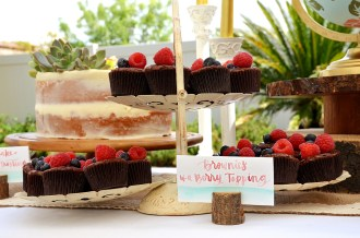 Shabby Chic Woodsy Baby Shower Cake Table Brownies with Berry Topping