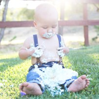 J Rose Photography - Isaiah 12 Month Portraits Cake Smash 2
