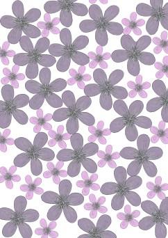 daisy-print