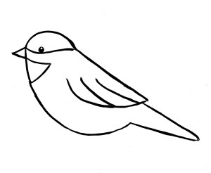 drawing step chickadee bird birds drawings easy draw branch simple outline lines pencil three sketches artist clipartmag samanthasbell photonesta curved