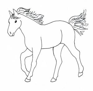 horse drawing step draw easy drawings horses simple cartoon sketch coloring pages beginners