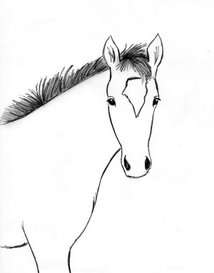 horse step drawing draw foal line drawn blaze its drew bell samanthasbell give related posts eyelids ears eye each inside