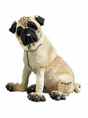 Pug, Mini by A Breed Apart