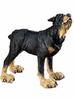 Rottweiler Mini by A Breed Apart