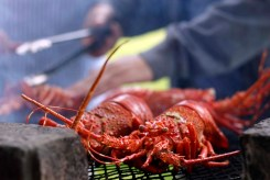 crayfish_kreef_runnybabbitcrafbd