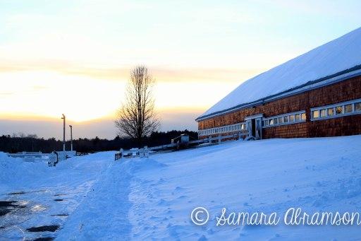 Winter 2015, Easton, Mass.   © Samara Abramson