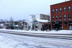 Winter Storm Juno, Amherst, Mass.   © Samara Abramson