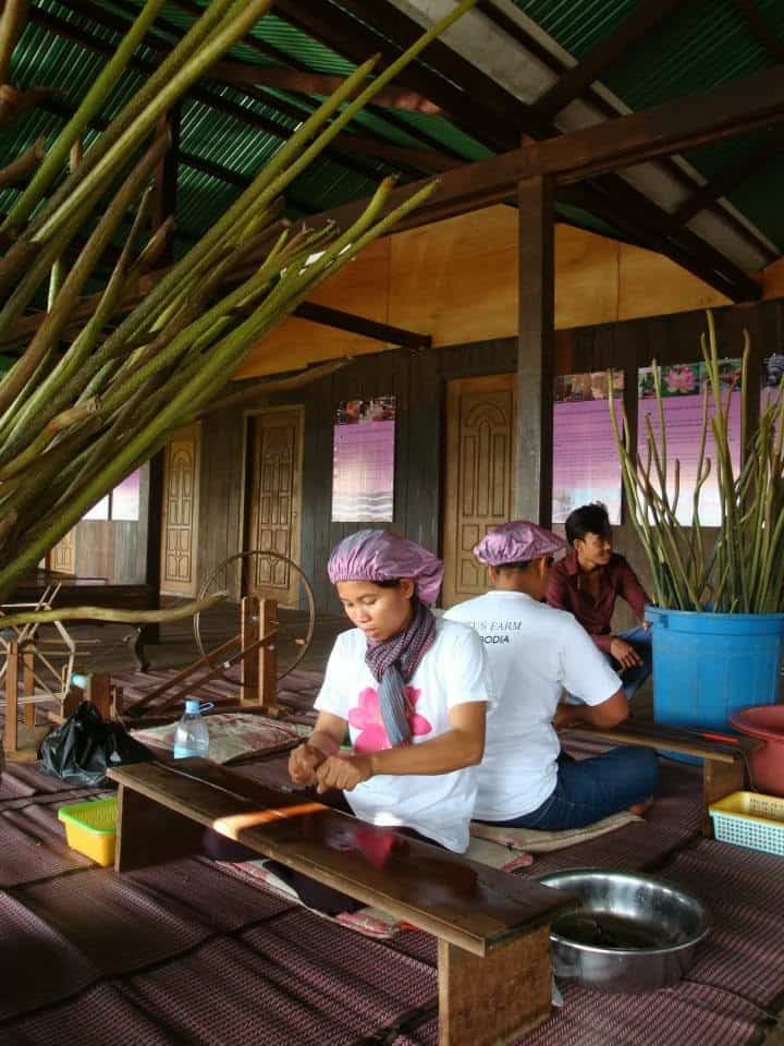 Cambodian Social Business