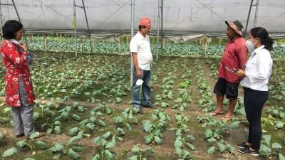 आलेख : कृषिउपजमा केन्द्रित प्रधानमन्त्री कृषि आधुनिकीकरण परियोजना