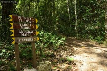 floresta-da-tijuca-trilhas